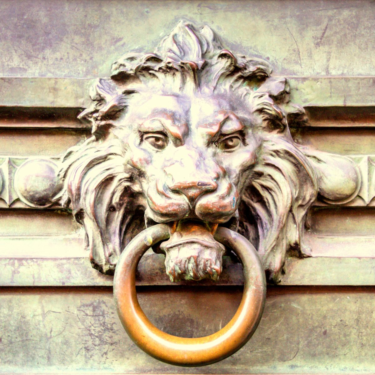 A antique lion door knocker showing age and patina